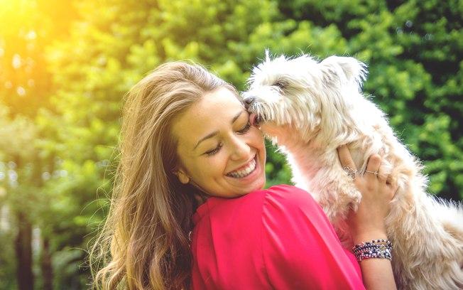 Por que contratar o serviço de um seguro para animais de estimação?